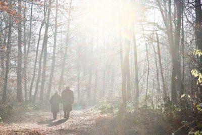 Altes Paar geht im Wald spazieren