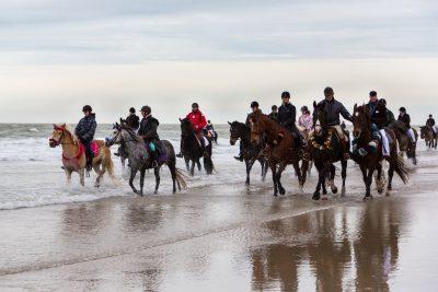 Viele Reiter auf Pferden am Strand im Wasser