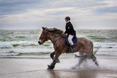 Reiterin auf Kaltblut galoppiert durchs Wasser